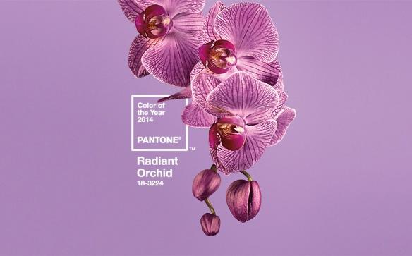 pantone colour 2014